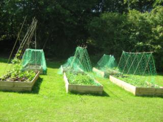 allotment 1
