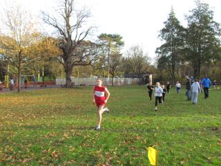 Cross Country (8)